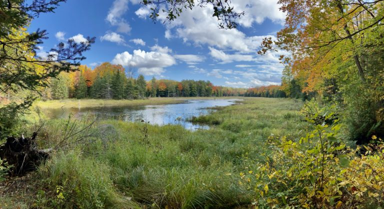 Kate's Lake in Mississippi Mills: Hiking Guide